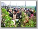 Вербное воскресение 2008 год